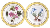 Lot 27-Two Derby plates