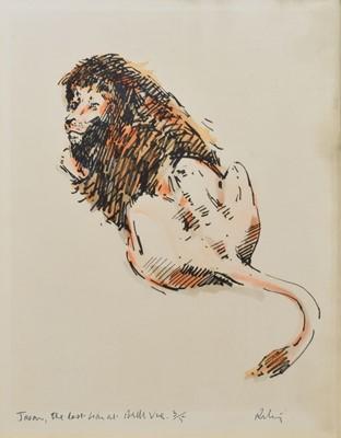 """Lot 10 - After Harold Riley, """"Jason, the Last Lion at Belle Vue"""", signed print."""
