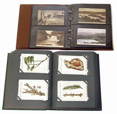 Lot 95-Vintage postcard collection in albums including Greetings Fairy Tales, Pets and Early Humour