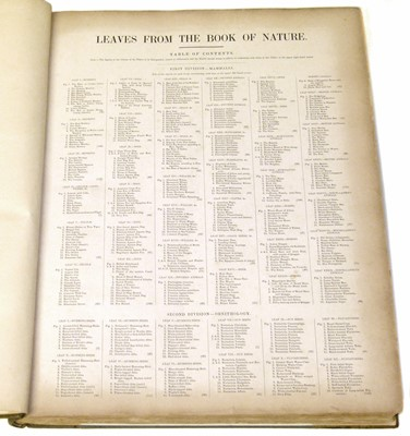 Lot 77 - Leaves from the Book of Nature, one volume.