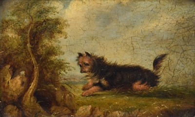 Lot 24 - Circle of George Armfield (British 1808-1893)
