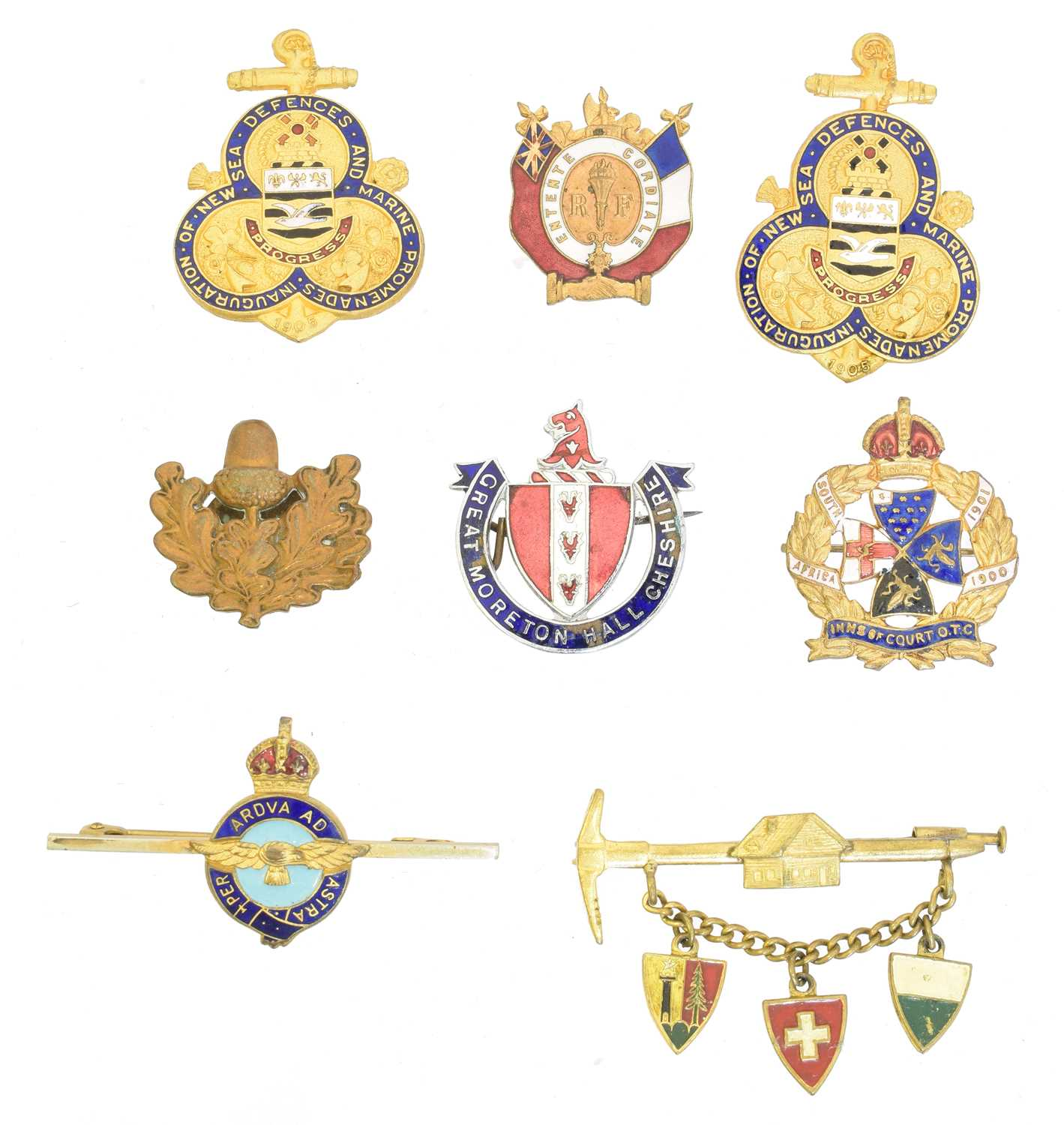 Lot 36 - A selection of enamel brooches, badges and buttonholes