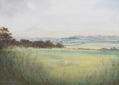 Lot 179 - Janet Kenyon (British 1959-)
