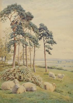 Lot 46 - William Sidney Cooper (British 1854-1927)