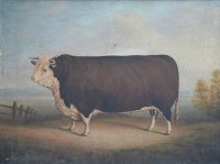 531 - D.M.H, 19th/20th century Naive School, A prize bull in a rural landscape, oil.
